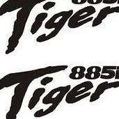 Tigger885