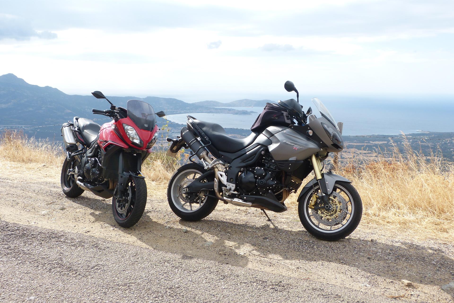 2 Tigers auf Korsika 2016
