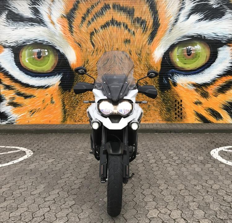 tiger XRX.jpg