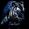 Tiger Explorer Umkipper und... - letzter Beitrag von TomKurt