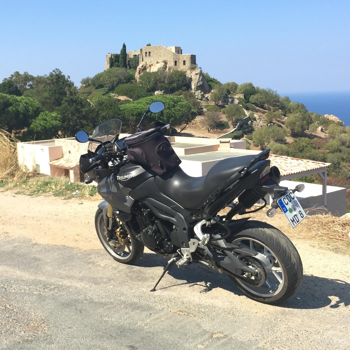 Tiger auf Korsika 2016