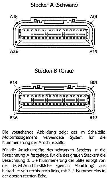Acumen Ganganzeige - Technik Tiger 1050 (ab Bj.07) - Tigerhome